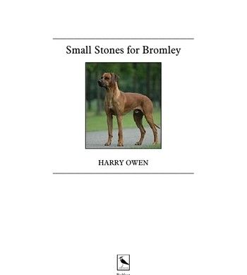 Small Stones for Bromley