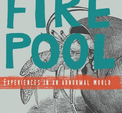 Firepool: Experiences in an Abnormal World by Hedley Twidle