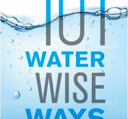 101 Water Wise Ways by Helen Moffett