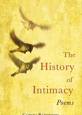 The History of Intimacy by Gabeba Baderoon