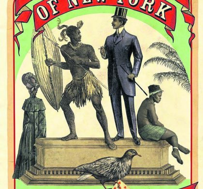 The Zulus of New York by Zakes Mda